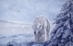 Картинка зима, поле, лес, белый, небо, морда, снег, птицы, поза, туман, рендеринг, ель, стая, медведь, дымка, …