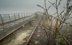 Картинка грусть, ветки, мост, вишня, туман, пасмурно, куст, рельсы, весна, утро, ограждение, железная дорога, перила, гравий, …
