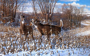 Картинка зима, лес, небо, облака, снег, деревья, ветки, природа, рисунок, картина, арт, пара, живопись, олени, кусты, …
