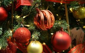 Картинка зима, шарики, праздник, шары, Рождество, красные, Новый год, ёлка, хвоя, ёлочные игрушки, новогодние украшения, новогодние …