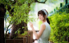 Картинка листья, девушка, ветки, азиатка, милашка, боке