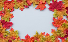 Картинка осень, листья, фон, colorful, клен, background, autumn, leaves, осенние, maple