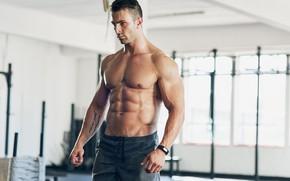 Картинка поза, фигура, muscle, мышцы, muscles, пресс, атлет, Bodybuilding, бодибилдер, abs, weight, bodybuilder