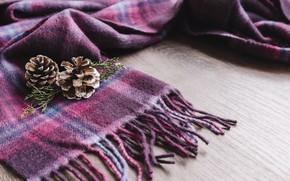 Картинка зима, шарф, шишки