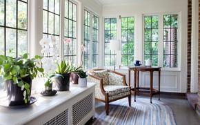 Картинка цветы, интерьер, кресло, столик, веранда, Ccraftsman interior design