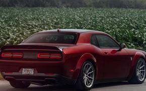 Картинка Dodge, Challenger, 2018, Hellcat, SRT, Vossen