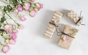 Картинка Love, подарки, Roses, розы, Present