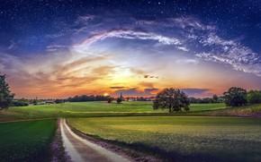 Обои поле, небо, дорога