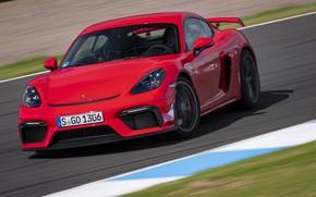 Картинка Porsche, Cayman, Фары, GT4, 2019, Porsche 718 (982) Cayman GT4, Траса