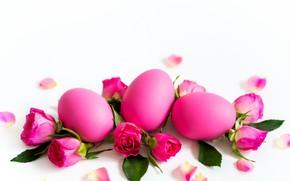 Картинка цветы, праздник, розы, яйца, пасха, бутоны