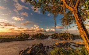 Обои небо, солнце, облака, деревья, ветки, тропики, река, камни, течение, Laos