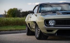 Картинка Фара, Chevrolet, Диск, Колесо, 1969, Camaro, Chevrolet Camaro, Muscle car, Classic car, Wide Body Kit, …