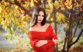 Картинка осень, девушка, волосы, Владислав Оплетаев, Дарья Охапкина
