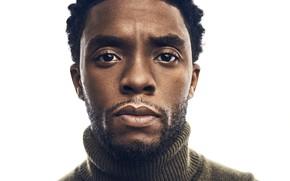 Картинка взгляд, портрет, актёр, Chadwick Boseman