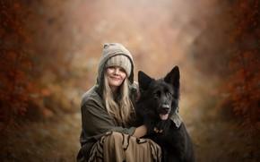 Картинка человек, собака, друзья