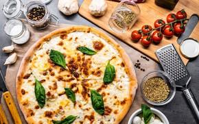 Картинка сыр, пицца, помидоры, специи, базилик