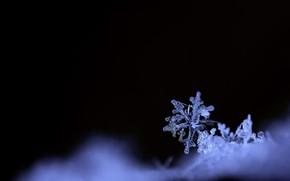Картинка зима, природа, снежинка