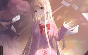 Картинка девушка, закат, ветер, письма