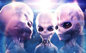 Картинка глаза, взгляд, свет, сияние, фантастика, портрет, монстры, три, серые, трио, пришельцы, инопланетяне