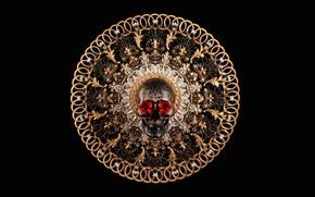 Картинка роза, череп, арт, Salvatore Miranda, SKULL