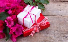 Картинка цветы, букет, подарки