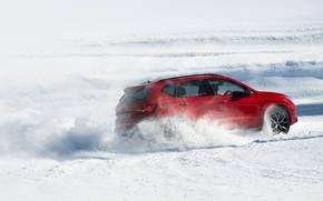 Картинка снег, движение, SUV, Seat, Cupra, Ateca, 2019