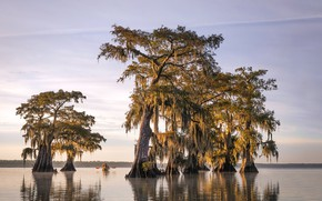 Картинка United States, Louisiana, Parish Governing Authority District 4, Morning Exercise
