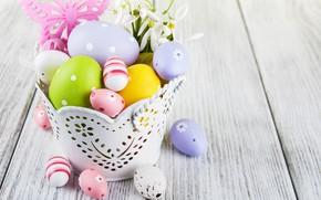 Картинка цветы, яйца, colorful, подснежники, Пасха, happy, wood, blossom, flowers, spring, Easter, eggs, decoration, snowdrops