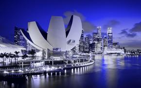 Картинка дома, музей, огни, ночь, Сингапур