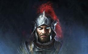 Картинка взгляд, воин, шлем, мужчина, Divinity: Original Sin II