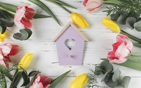 Картинка цветы, colorful, тюльпаны, розовые, yellow, pink, flowers, beautiful, tulips, spring