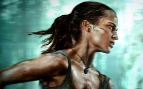 Картинка взгляд, профиль, Tomb Raider, Лара Крофт, hair, Алисия Викандер, Alicia Vikander
