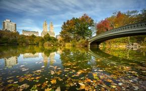 Обои Bow Bridge, река, Нью-Йорк, центральный парк, NYC, мост