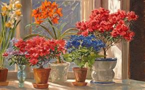 Обои цветы, окно, ваза, подоконник, горшки, Акварель, Ольга Александровна Куликовская-Романова