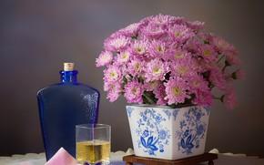 Картинка цветы, стакан, стиль, фон, бутылка, розовые, натюрморт, хризантемы, рюмка, вазон, салфетки