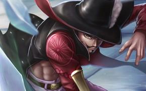 Картинка шляпа, пират, парень, One Piece