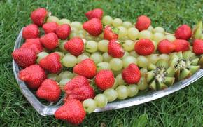 Картинка трава, ягоды, клубника, виноград