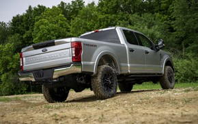 Картинка серый, Ford, пикап, Super Duty, F-350, Tremor, 2020, Off-Road Package, F-series, возле леса