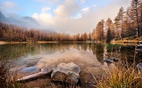 Картинка осень, лес, небо, трава, вода, облака, пейзаж, горы, природа, туман, озеро, пруд, отражение, камни, берег, ...