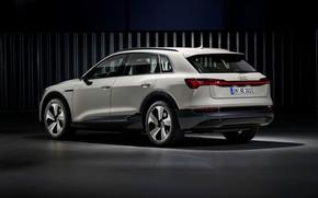 Картинка свет, серый, фон, Audi, вид сбоку, E-Tron, 2019