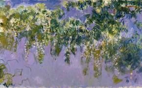 Картинка Claude Monet, Wisteria, 1917-1920