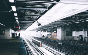 Картинка снег, люди, голубь, станция, платформа, Ryan Millier