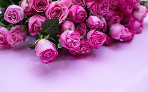 Картинка фон, розовый, розы, букеи