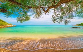 Картинка sky, sea, sun, tropical beach