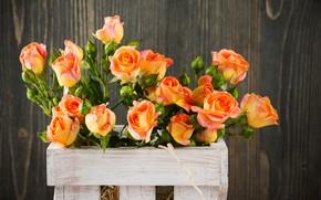 Картинка розы, букет, ящик, оранжевые, IRINA BORT