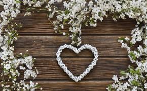 Картинка цветы, сердце, весна, love, white, белые, heart, wood, blossom, flowers, romantic, spring