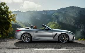 Картинка горы, серый, обрыв, дерево, BMW, профиль, родстер, BMW Z4, M40i, Z4, 2019, G29