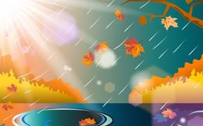 Картинка осень, листья, ветки, дождь, лужи, лучи солнца