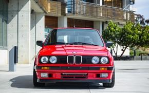 Картинка BMW, E30, Touring