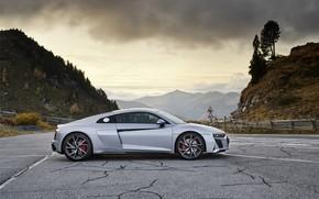 Картинка Audi, суперкар, Audi R8, вид сбоку, Coupe, V10, 2020, RWD